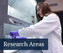 button: research areas