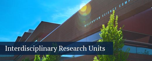 Button: interdisciplinary research units